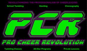 pro cheer banner 2